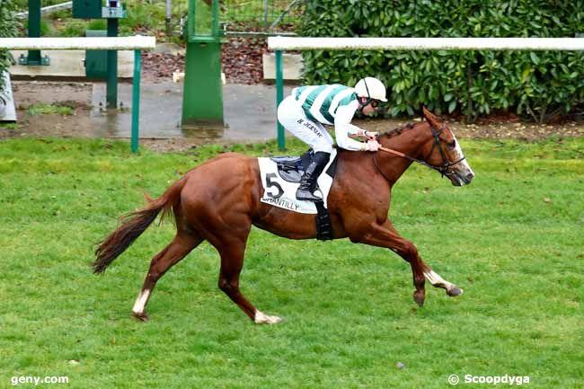 14/03/2019 - Chantilly - Prix Ronde de Nuit : Arrivée