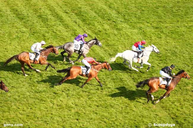Prix La Barka 2014 (H., Gr.II, Auteuil) 18-05 : Thousand stars Photo_arrivee_614906