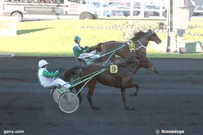 16/01/2011 - Vincennes - Prix de Belgique : Arrivée
