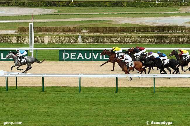 08/03/2013 - Deauville - Prix du Pays de Bray : Arrivée