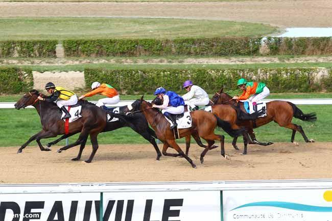 28/07/2013 - Deauville - Prix des Avaloirs : Arrivée