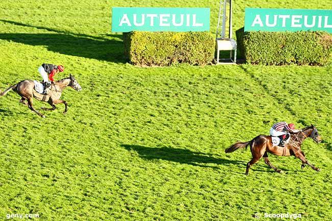 16/03/2019 - Auteuil - Prix Didier Mescam : Arrivée
