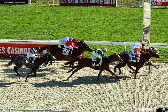 22/01/2010 - Cagnes-sur-Mer - Prix France Soir (Prix de Marseille) : Arrivée