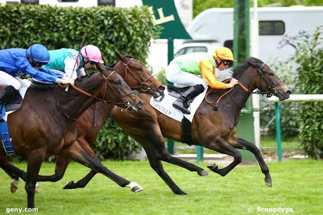 17/05/2019 - Chantilly - Prix des Veneurs : Arrivée