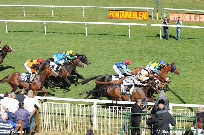 26/03/2012 - Fontainebleau - Prix du Conseil Municipal de Fontainebleau : Arrivée