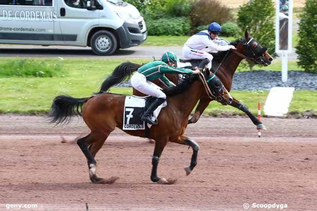 17/04/2019 - Cordemais - Prix de la Ville de Savenay : Arrivée