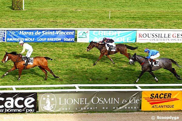 02/01/2014 - Pau - Prix Pierre Estrem-Rey : Arrivée