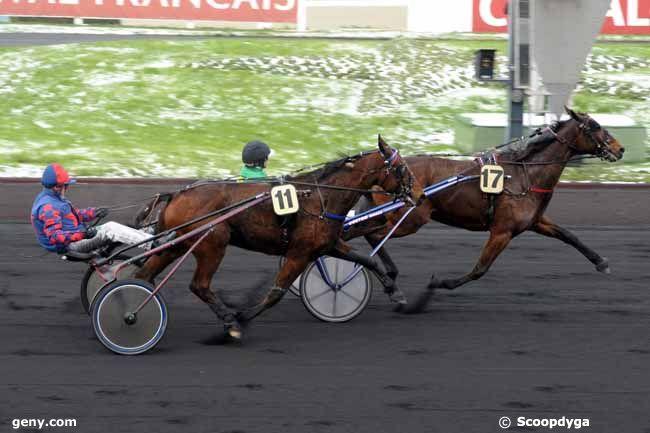 12/01/2010 - Vincennes - Prix du Limousin : Arrivée