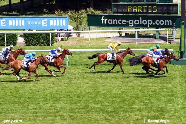 18/05/2015 - Saint-Cloud - Prix du Mandinet : Arrivée