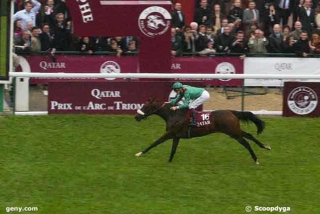05/10/2008 - Longchamp - Qatar Prix de l'Arc de Triomphe : Arrivée