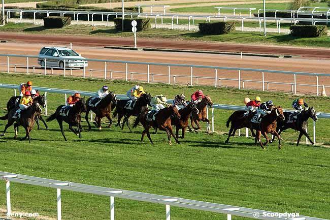 21/01/2011 - Cagnes-sur-Mer - Prix Charles Gastaud : Arrivée