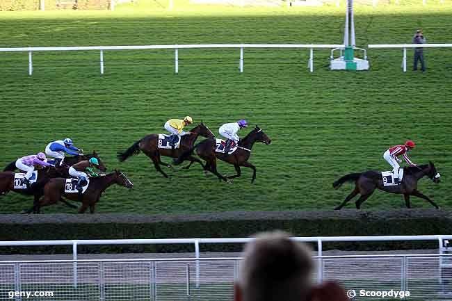 22/11/2008 - Saint-Cloud - Prix de l'Elevage : Arrivée