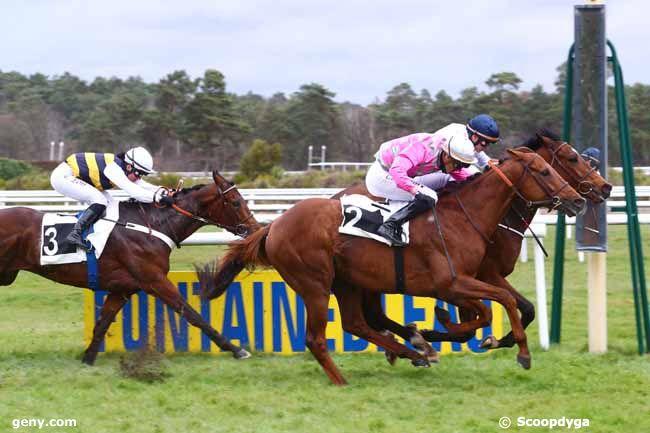 15/03/2019 - Fontainebleau - Prix de Samoreau : Arrivée