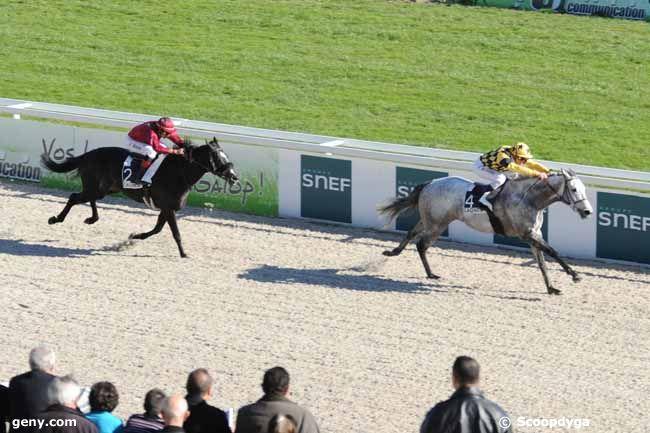 02/02/2011 - Cagnes-sur-Mer - Prix de Marseille : Arrivée