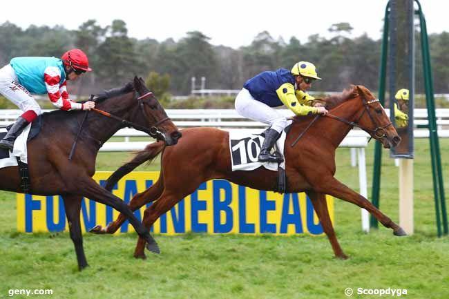 15/03/2019 - Fontainebleau - Prix des Pins Laricio : Arrivée