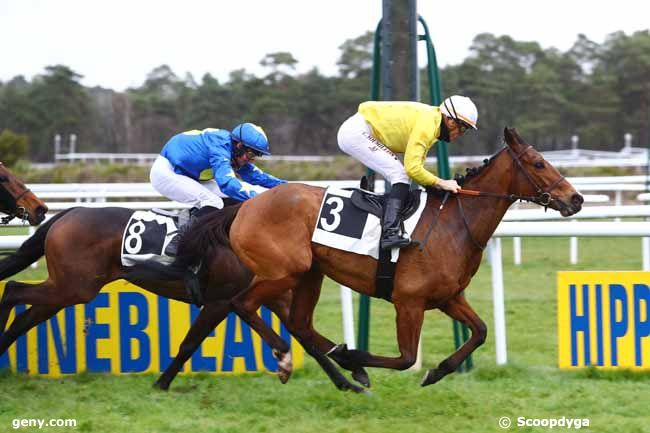 15/03/2019 - Fontainebleau - Prix des Hauteurs de la Solle : Arrivée