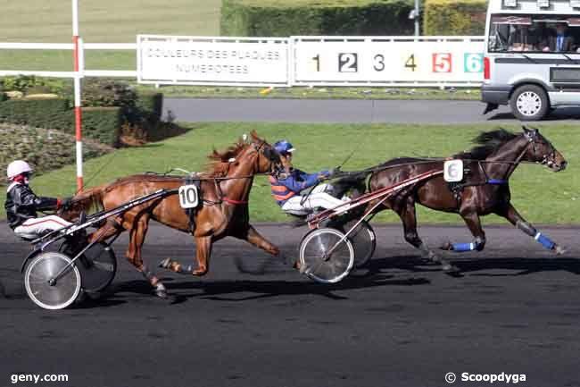 03/03/2011 - Vincennes - Prix Vindex : Arrivée