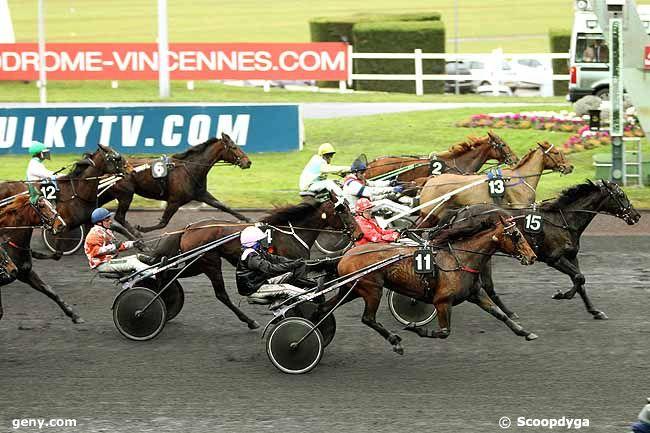 29/01/2013 - Vincennes - Prix de Vittel : Arrivée