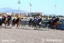 24/01/2017 - Cagnes-sur-Mer - Prix de Marseille : Arrivée