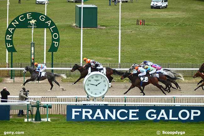 12/03/2019 - Chantilly - Prix Jocker : Arrivée