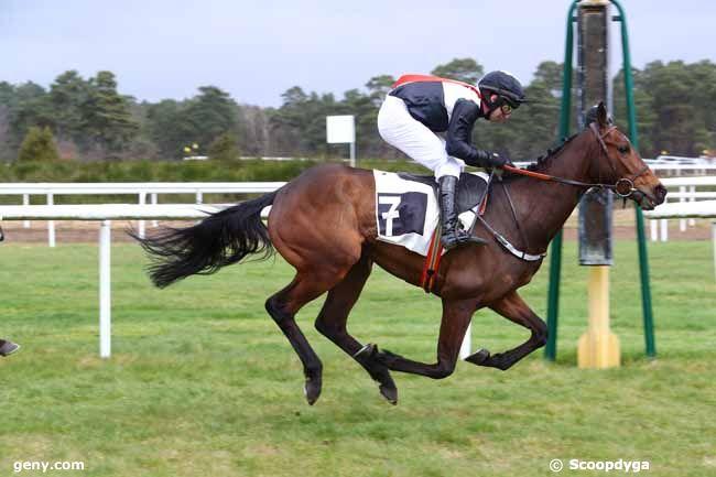 13/03/2018 - Fontainebleau - Prix de Montigny-sur-Loing : Arrivée